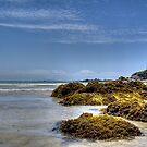 Whananaki Beach, New Zealand. by Roy  Massicks