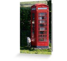 phone home Greeting Card
