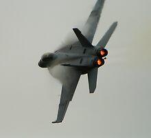 F-18F Super Hornet by Paul J. Owen