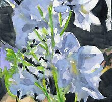 Delphiniums by Amy-Elyse Neer