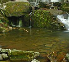 Laurel Falls Pool by Kevin Price