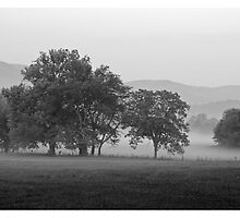 Cades Cove in the fog. by Kevin Price