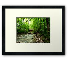 Lost Valley Bridge,  Buffalo National Wilderness  Framed Print