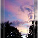 Sky of Purple by June Holbrook