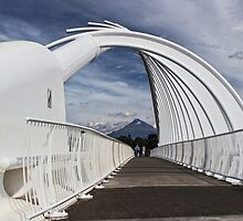 Te Rewa Rewa bridge with Mount Taranaki by Roger Neal