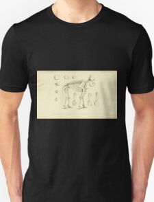 The Animal Kingdom by Georges Cuvier, PA Latreille, and Henry McMurtrie 1834 621 - Mammalia Mammals T-Shirt