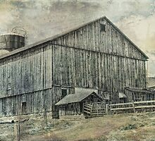 The Old Gray Barn by vigor