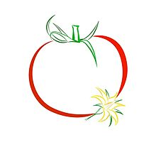 Colour outline of ripe tomato and tomato flower by Katharina13