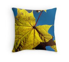Scream of the Silent Note Throw Pillow