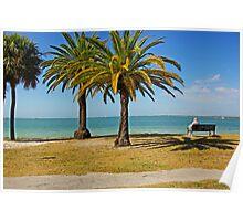 Magical Palms and the Ocean in Sarasota,Florida Poster