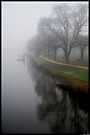 Yarra river in fog by Andrew Wilson