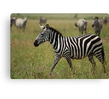 Through the Grass Canvas Print