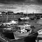 Low Tide in Harbour by slugman
