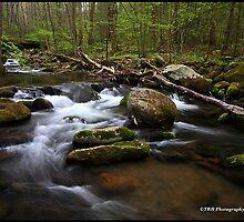 Crossing Roaring Fork, GSMNP by ThomasRBiggs