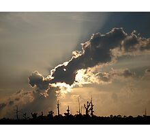 Sunset Over Swamp, May 26, 2009 Photographic Print