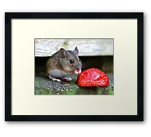 Strawberry Moose Framed Print