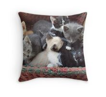Litter Throw Pillow