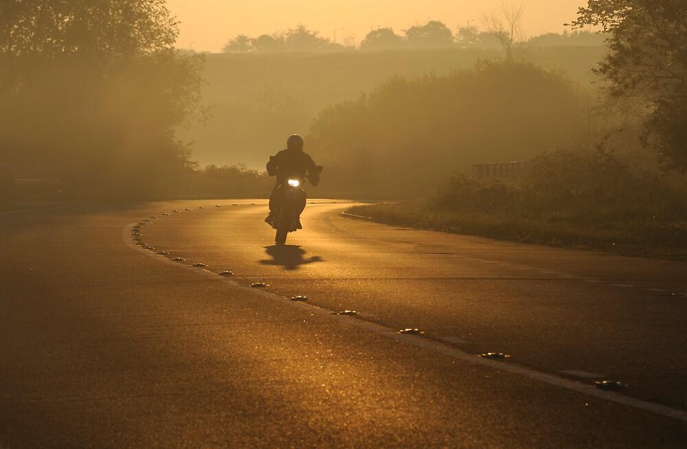 Rider by Kasia Nowak