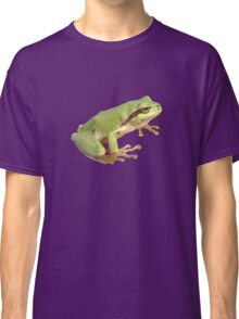 European Tree Frog Isolated Classic T-Shirt