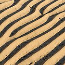 Sand Ripples by Kasia Nowak