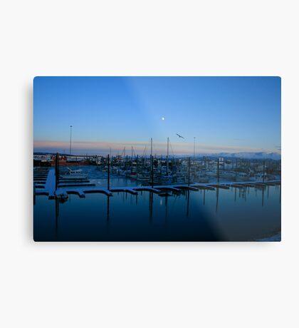 Homer Boat Harbour Metal Print