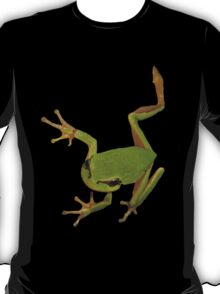 European Green Tree Frog Isolated T-Shirt