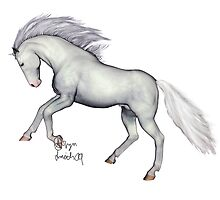 White Thoroughbred Type Horse by RaptorGirl