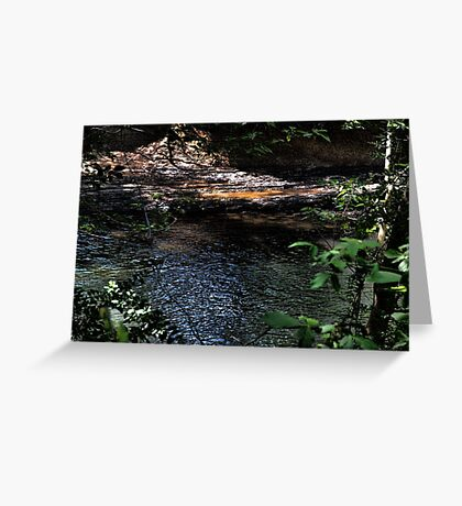 Cahaba River Greeting Card
