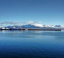 Reykjavik Port by elspeth2000