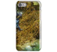 Blue Dart Poison Frog iPhone Case/Skin