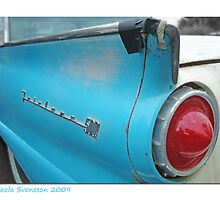 Ford Fairlane 500 Skyliner by Paola Svensson