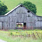 Weathered Barn by raindancerwoman