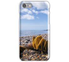 Back Beach 2 - Lyme Regis iPhone Case/Skin