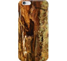 Twelve parts of a Tree (8) iPhone Case/Skin