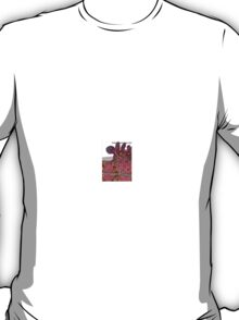 Krishna 3 T-Shirt