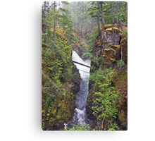 Little Qualicum Falls, Canada Canvas Print