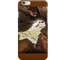 Twelve parts of a Tree (12) iPhone Case/Skin