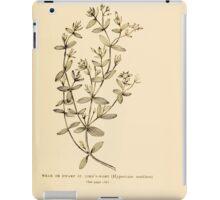 Harper's Guide to Wild Flowers 1912 Creevey, Caroline and Stickney, Alathea 060 Weak or Dwarf Saint John's Wort iPad Case/Skin