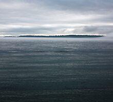 dark island fog flow 2, Puget Sound by Christopher Barton