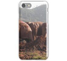 Happy, Healthy,FREE Elephants. iPhone Case/Skin
