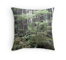 dry stream, Olympic Peninsula, USA Throw Pillow