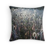 afternoon thistles, Ahjumawi Lava Springs, California Throw Pillow