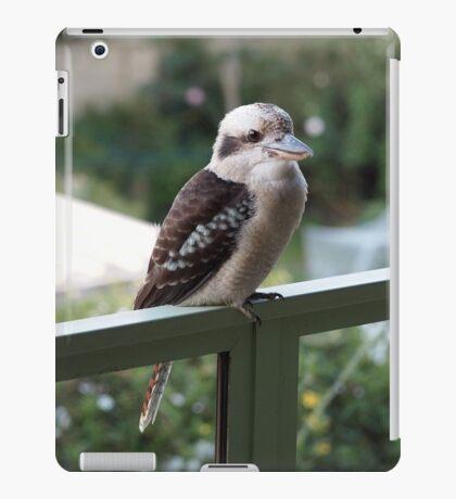 A kookaburra at rest iPad Case/Skin