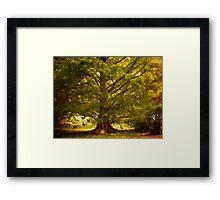 The mystics tree Framed Print