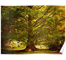 The mystics tree Poster