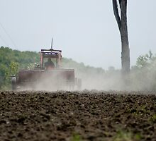 Planting the crop by Sean McConnery