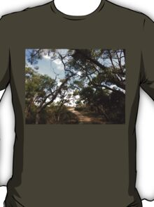 The Path To Serenity T-Shirt