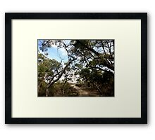 The Path To Serenity Framed Print