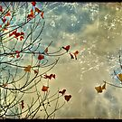 Autumn by Mark Moskvitch