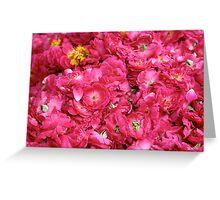 Hot Pink Greeting Card
